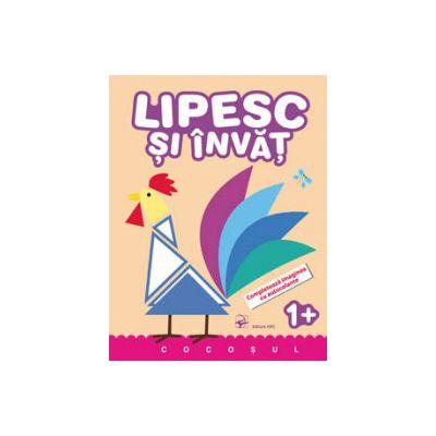 LIPESC SI INVAT. COCOSUL